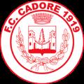 Cadore 1919