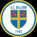 Calcio-Belluno-1.png